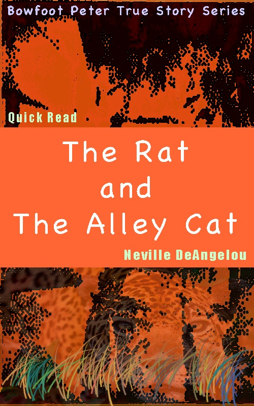 The Rat & The Alley Cat